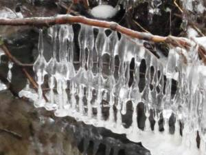 Lace in Ice