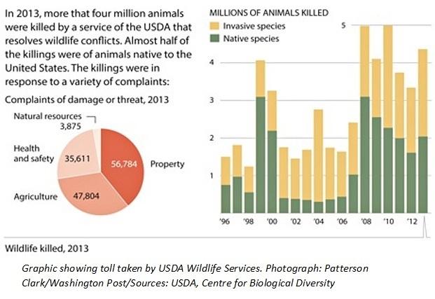 WildlifeServiceStats_2013
